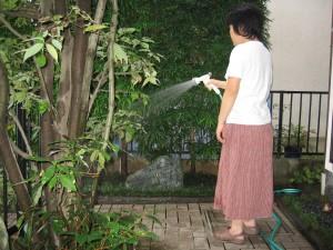 植栽の水やり